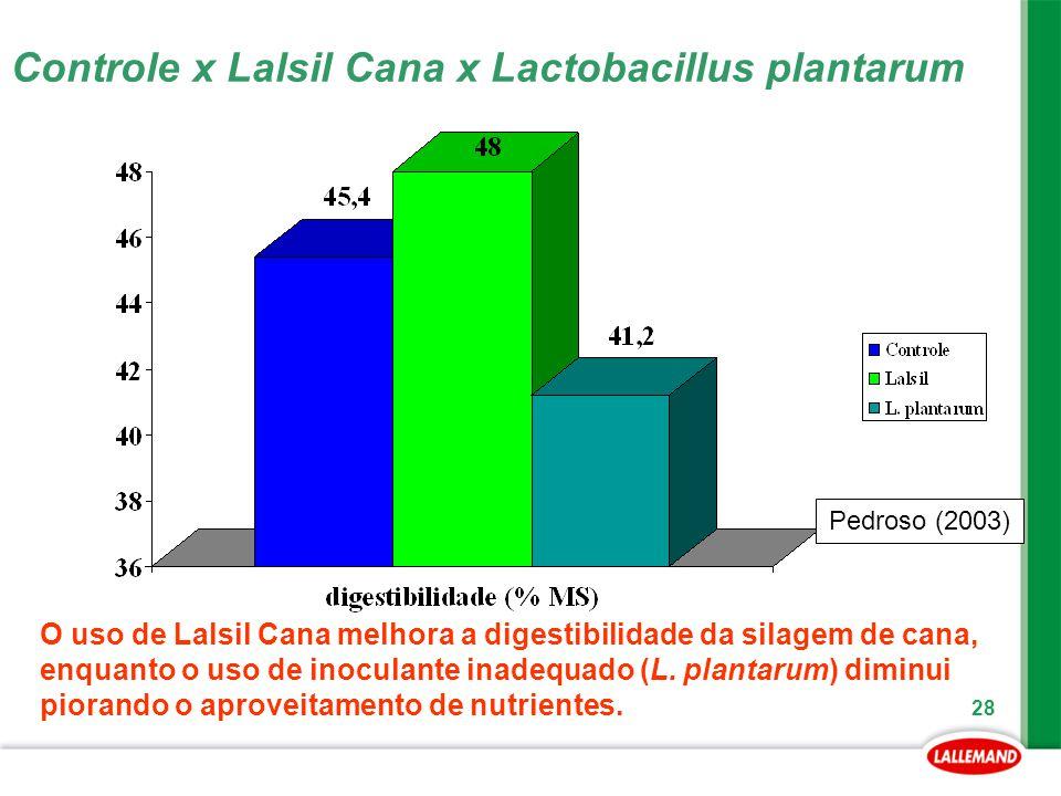 28 Pedroso (2003) Controle x Lalsil Cana x Lactobacillus plantarum O uso de Lalsil Cana melhora a digestibilidade da silagem de cana, enquanto o uso d