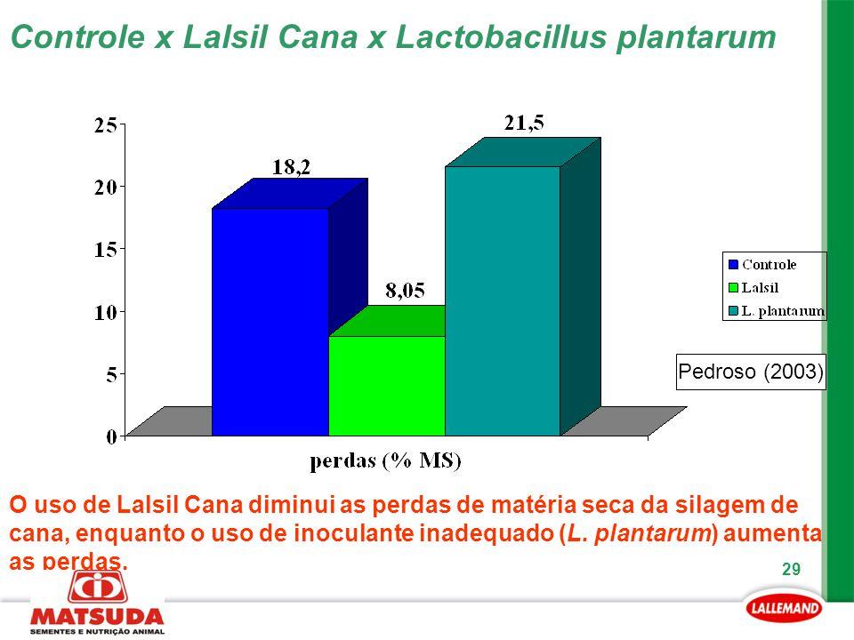 29 Pedroso (2003) Controle x Lalsil Cana x Lactobacillus plantarum O uso de Lalsil Cana diminui as perdas de matéria seca da silagem de cana, enquanto