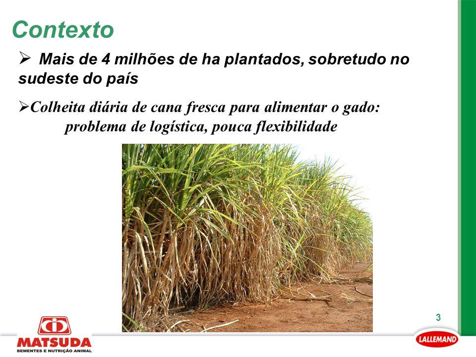 3 Contexto  Mais de 4 milhões de ha plantados, sobretudo no sudeste do país  Colheita diária de cana fresca para alimentar o gado: problema de logís