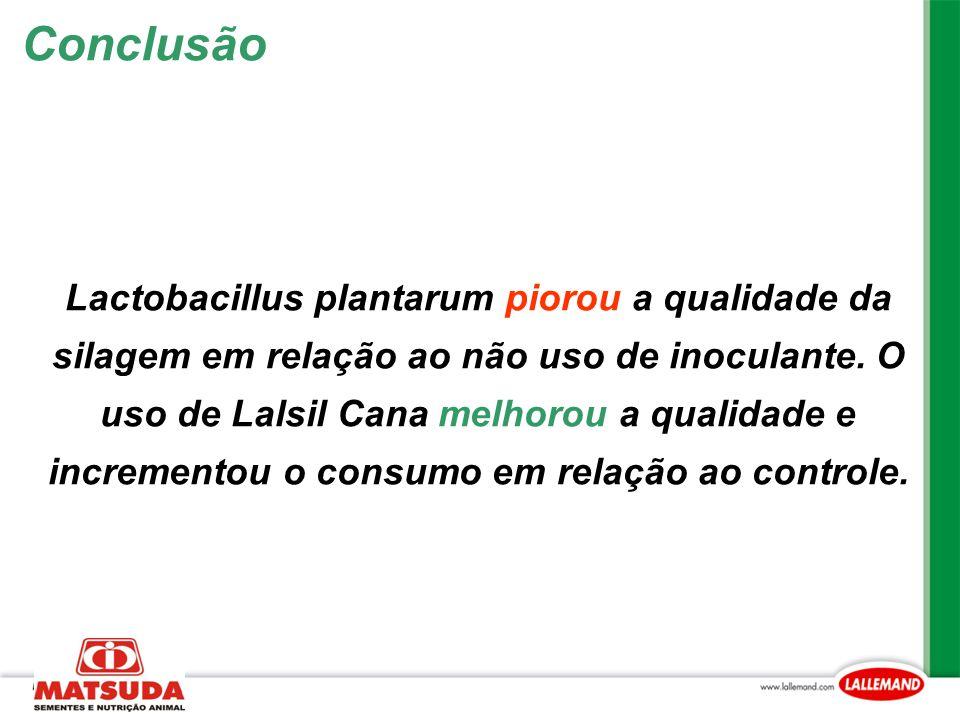 Lactobacillus plantarum piorou a qualidade da silagem em relação ao não uso de inoculante. O uso de Lalsil Cana melhorou a qualidade e incrementou o c