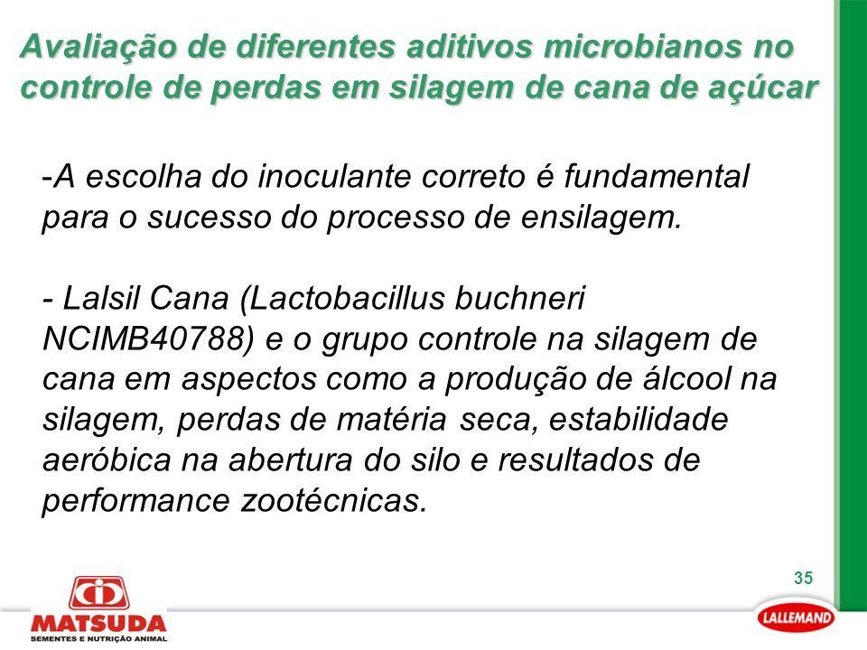 35 -A escolha do inoculante correto é fundamental para o sucesso do processo de ensilagem. - Lalsil Cana (Lactobacillus buchneri NCIMB40788) e o grupo