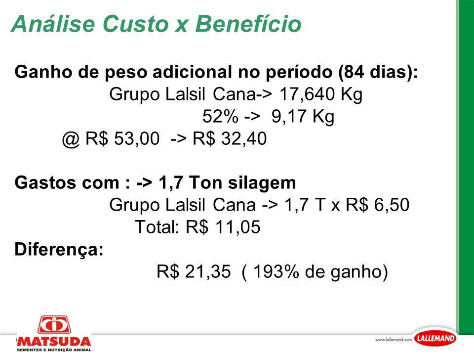 Análise Custo x Benefício Ganho de peso adicional no período (84 dias): Grupo Lalsil Cana-> 17,640 Kg 52% -> 9,17 Kg @ R$ 53,00 -> R$ 32,40 Gastos com