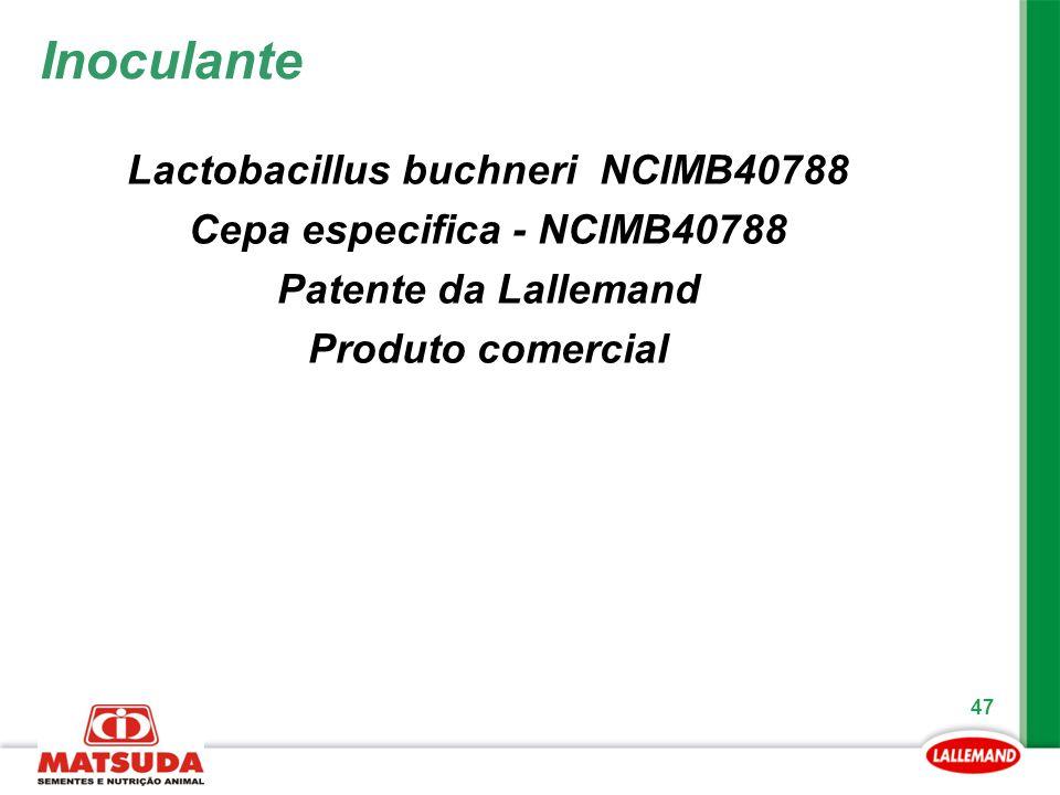 47 Lactobacillus buchneri NCIMB40788 Cepa especifica - NCIMB40788 Patente da Lallemand Produto comercial Inoculante