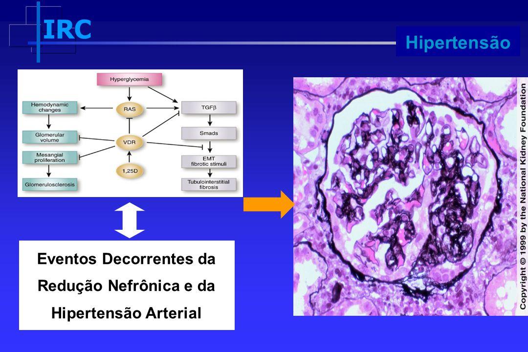IRC Progressão Eventos Decorrentes da Redução Nefrônica e da Hipertensão Arterial Hipertensão