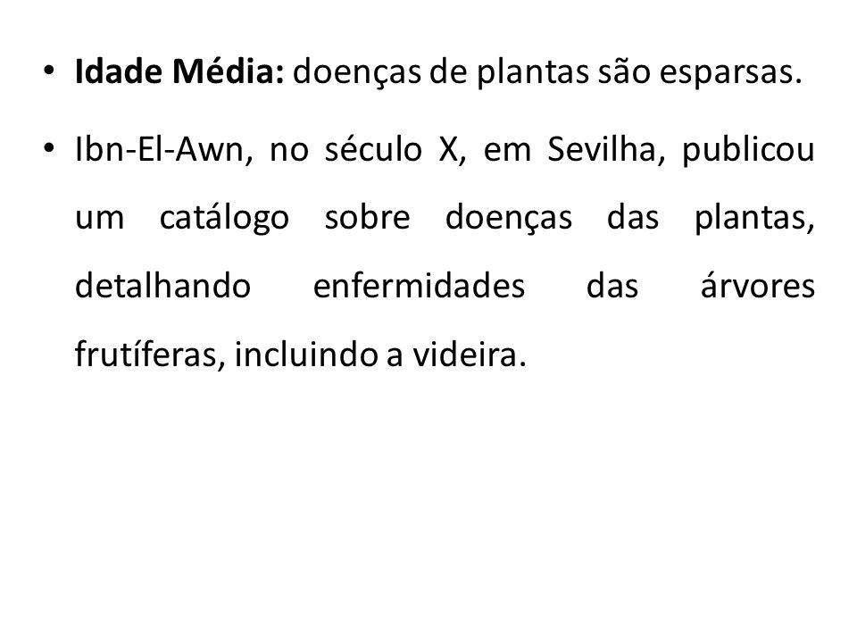 Idade Média: doenças de plantas são esparsas.