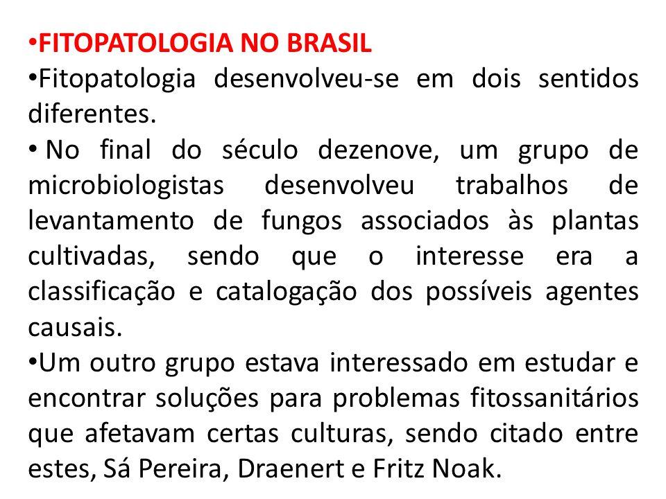 FITOPATOLOGIA NO BRASIL Fitopatologia desenvolveu-se em dois sentidos diferentes.