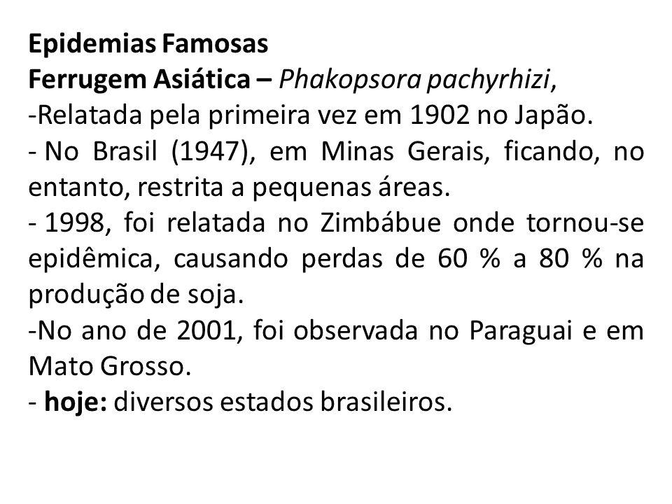 Epidemias Famosas Ferrugem Asiática – Phakopsora pachyrhizi, -Relatada pela primeira vez em 1902 no Japão.
