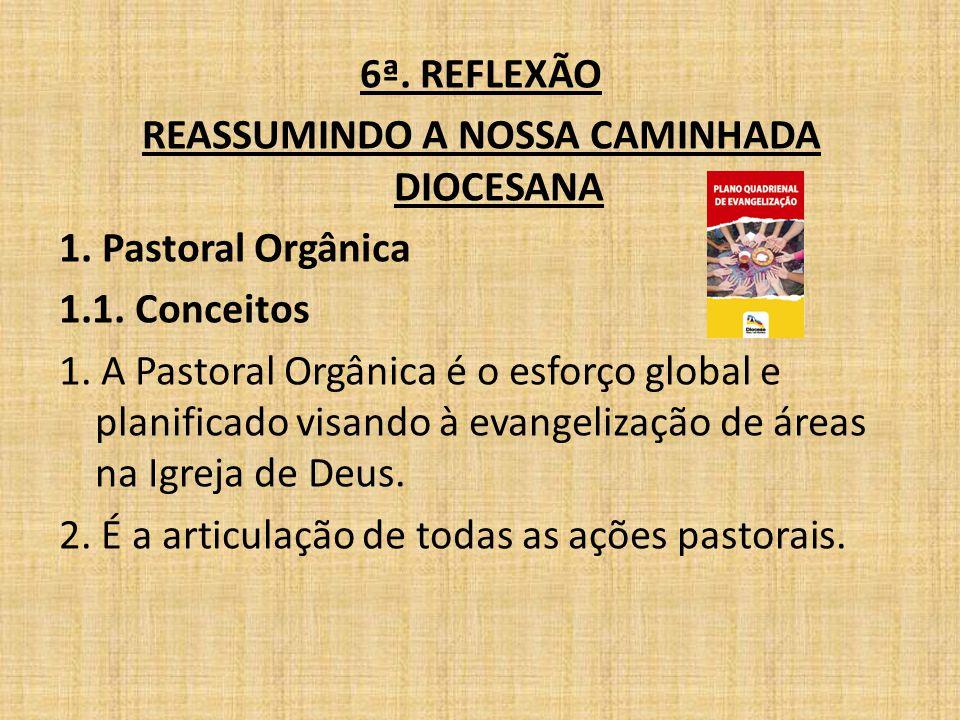 6ª. REFLEXÃO REASSUMINDO A NOSSA CAMINHADA DIOCESANA 1. Pastoral Orgânica 1.1. Conceitos 1. A Pastoral Orgânica é o esforço global e planificado visan