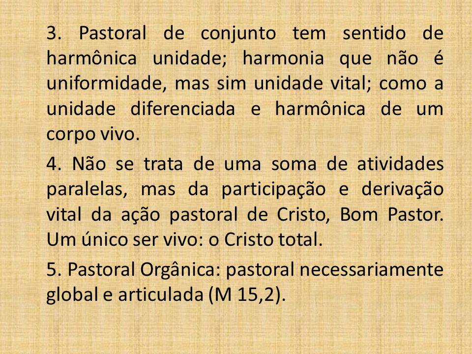 3. Pastoral de conjunto tem sentido de harmônica unidade; harmonia que não é uniformidade, mas sim unidade vital; como a unidade diferenciada e harmôn