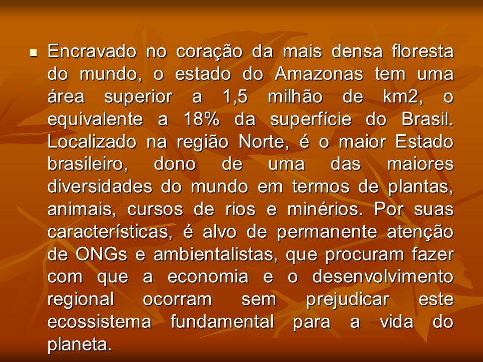 Encravado no coração da mais densa floresta do mundo, o estado do Amazonas tem uma área superior a 1,5 milhão de km2, o equivalente a 18% da superfíci