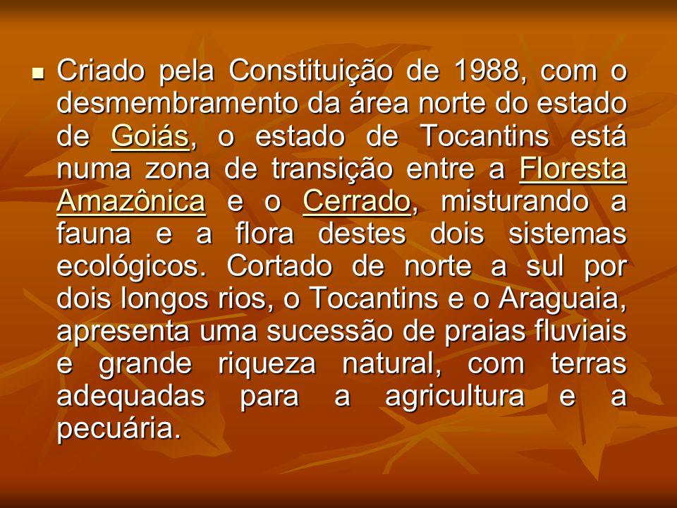 Criado pela Constituição de 1988, com o desmembramento da área norte do estado de Goiás, o estado de Tocantins está numa zona de transição entre a Flo