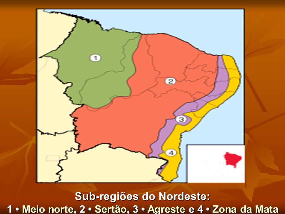 Sub-regiões do Nordeste: 1 Meio norte, 2 Sertão, 3 Agreste e 4 Zona da Mata Meio norteSertãoAgresteZona da MataMeio norteSertãoAgresteZona da Mata