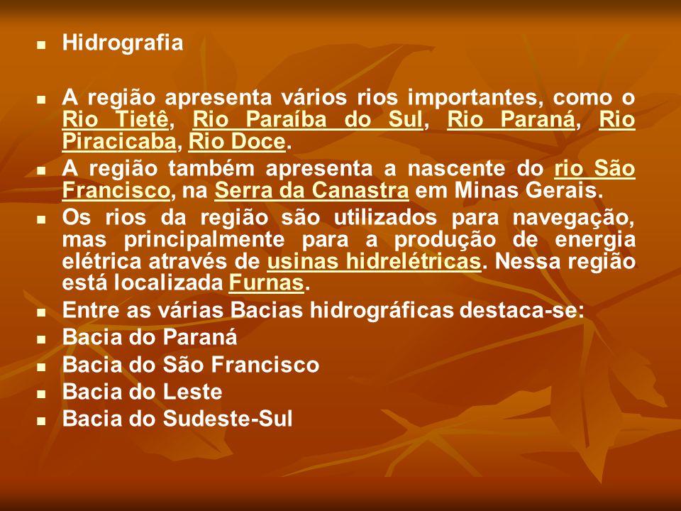 Hidrografia A região apresenta vários rios importantes, como o Rio Tietê, Rio Paraíba do Sul, Rio Paraná, Rio Piracicaba, Rio Doce. Rio TietêRio Paraí