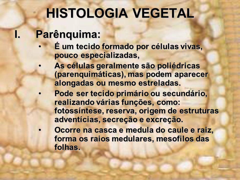 HISTOLOGIA VEGETAL I.Parênquima: É um tecido formado por células vivas, pouco especializadas,É um tecido formado por células vivas, pouco especializad