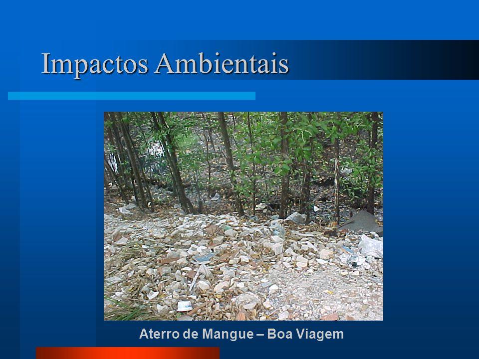 Impactos Ambientais Aterro de Mangue – Boa Viagem
