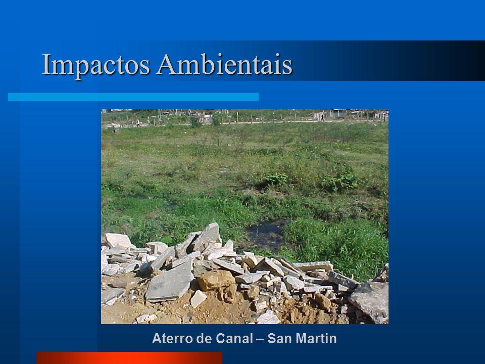 Impactos Ambientais Aterro de Canal – San Martin