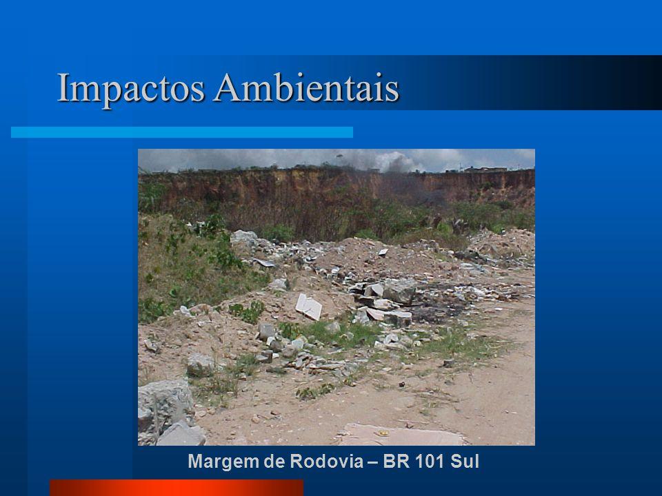 Impactos Ambientais Margem de Rodovia – BR 101 Sul