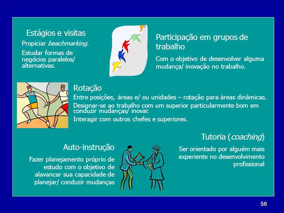 56 Estágios e visitas Propiciar beachmarking. Estudar formas de negócios paralelos/ alternativas. Participação em grupos de trabalho Com o objetivo de
