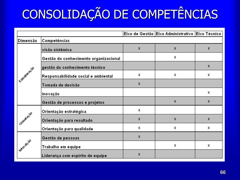 66 CONSOLIDAÇÃO DE COMPETÊNCIAS