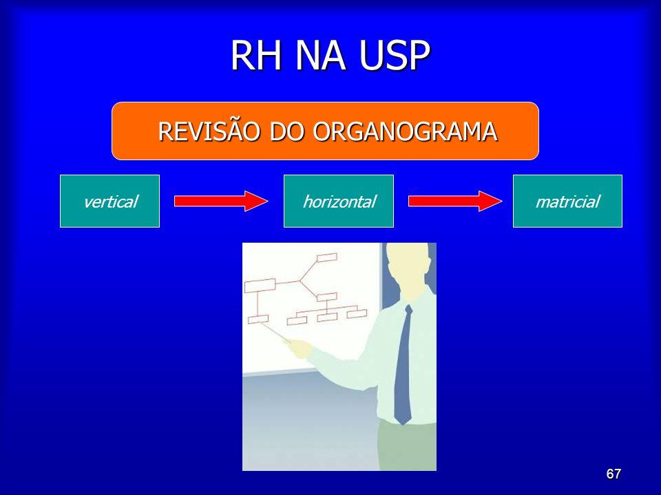 67 RH NA USP REVISÃO DO ORGANOGRAMA verticalhorizontalmatricial