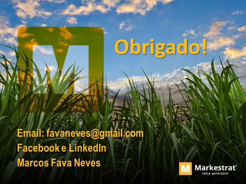Obrigado! Email: favaneves@gmail.com Facebook e LinkedIn Marcos Fava Neves