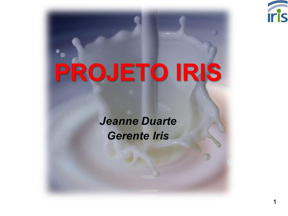 1 PROJETO IRIS Jeanne Duarte Gerente Iris