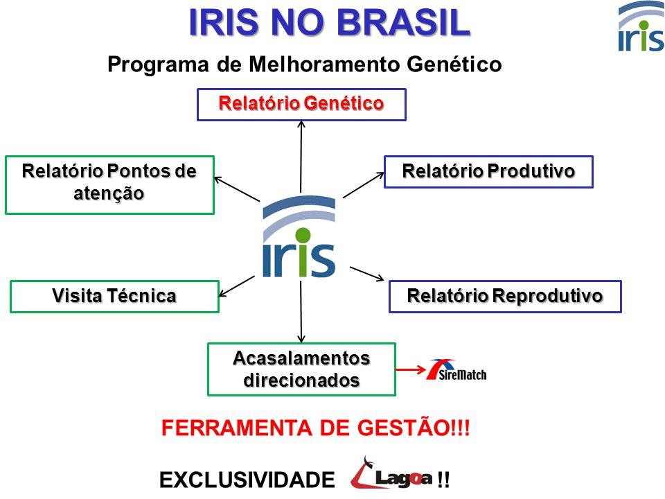 10 IRIS NO BRASIL EXCLUSIVIDADE !! Relatório Produtivo Relatório Reprodutivo Relatório Genético Relatório Pontos de atenção Visita Técnica Acasalament