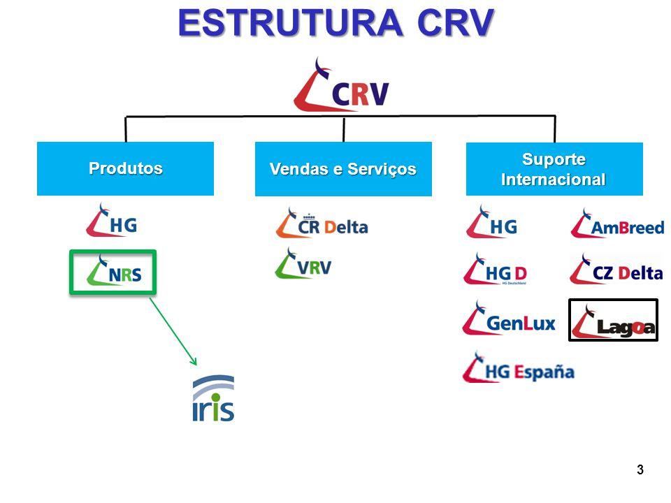 3 ESTRUTURA CRV Produtos Vendas e Serviços Suporte Internacional