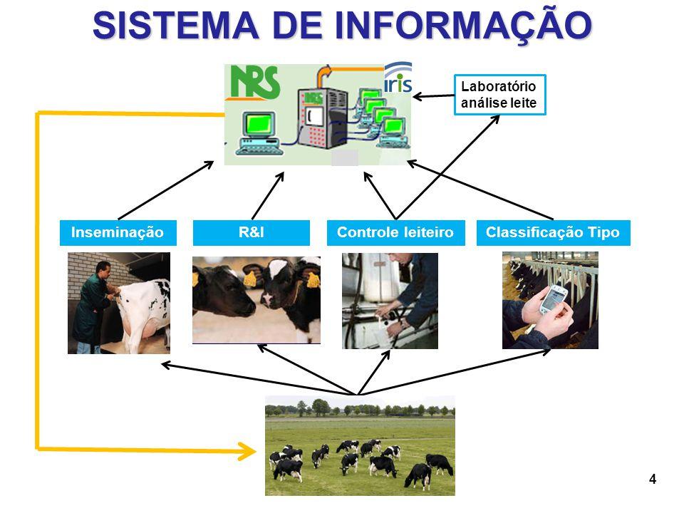 15 PRÉ-REQUISITOS Perfil Técnico Interesse em melhorar a produtividade Controle leiteiro mín.