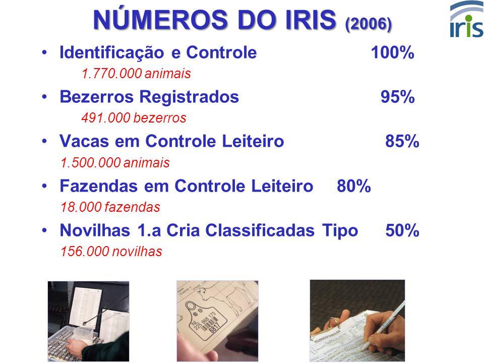 6 NÚMEROS DO IRIS (2006) Identificação e Controle 100% 1.770.000 animais Bezerros Registrados 95% 491.000 bezerros Vacas em Controle Leiteiro 85% 1.50