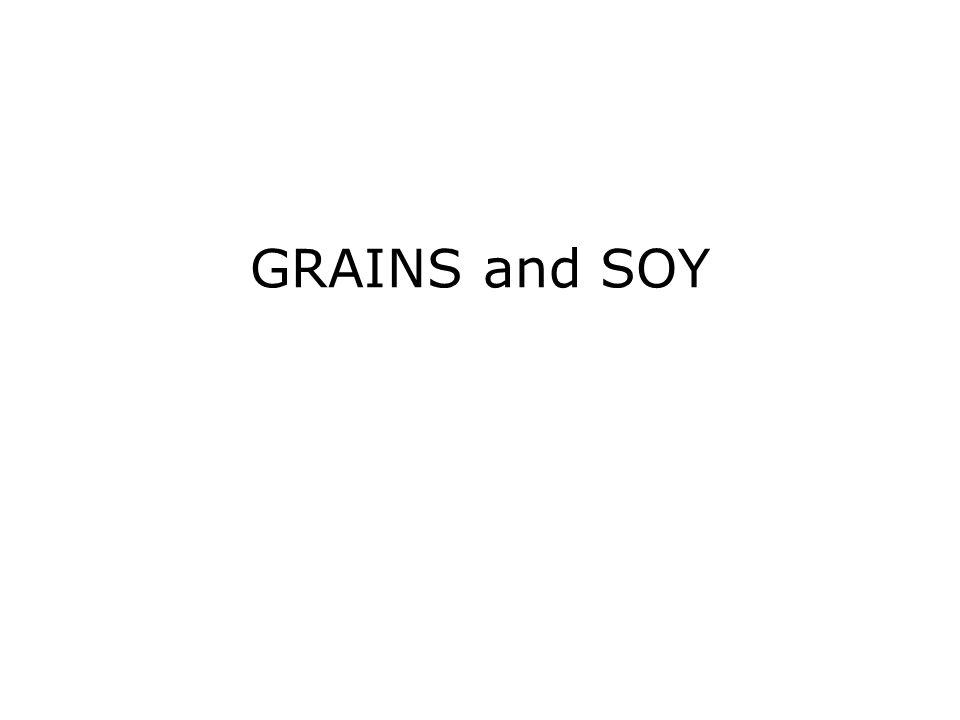 GRAINS and SOY
