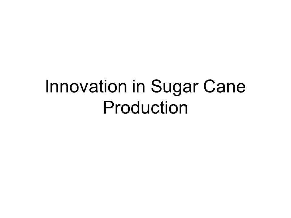 Innovation in Sugar Cane Production