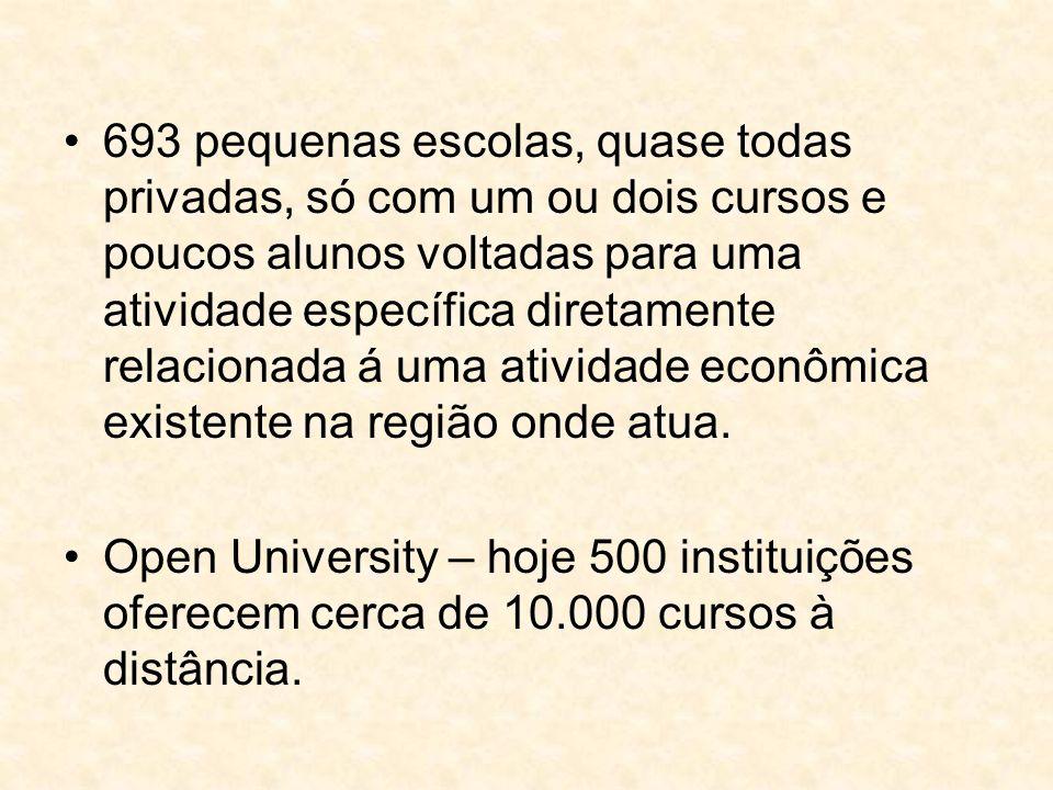 693 pequenas escolas, quase todas privadas, só com um ou dois cursos e poucos alunos voltadas para uma atividade específica diretamente relacionada á