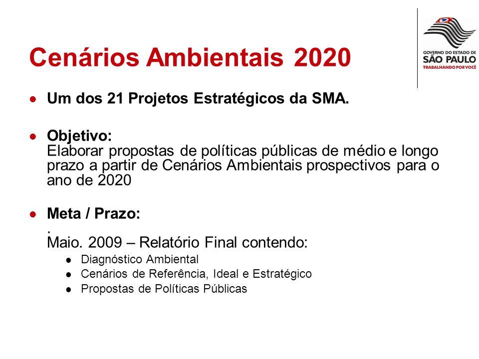 Cenários 2020 20072020 Variável ambiental Ideal Mais Provável Estratégico } POLÍTICAS PÚBLICAS