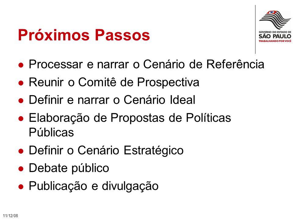 Próximos Passos Processar e narrar o Cenário de Referência Reunir o Comitê de Prospectiva Definir e narrar o Cenário Ideal Elaboração de Propostas de Políticas Públicas Definir o Cenário Estratégico Debate público Publicação e divulgação 11/12/08