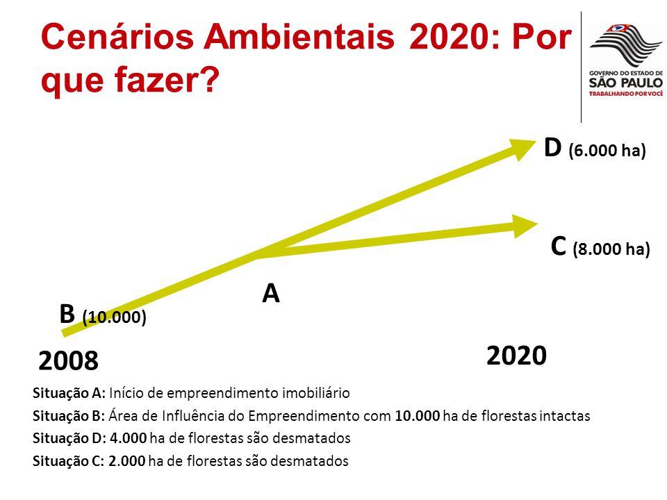 Desafio: Complexidade de Relações Construção Civil Setor sucro alcooleiro Rodovias Mancha urbana mananciais Qualidade Das água Energia Qualidade do ar Crescimento Econômico Mineração Ind.