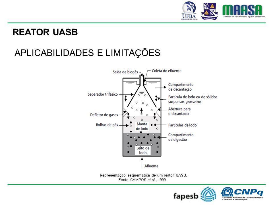 REATOR UASB Representação esquemática de um reator UASB.