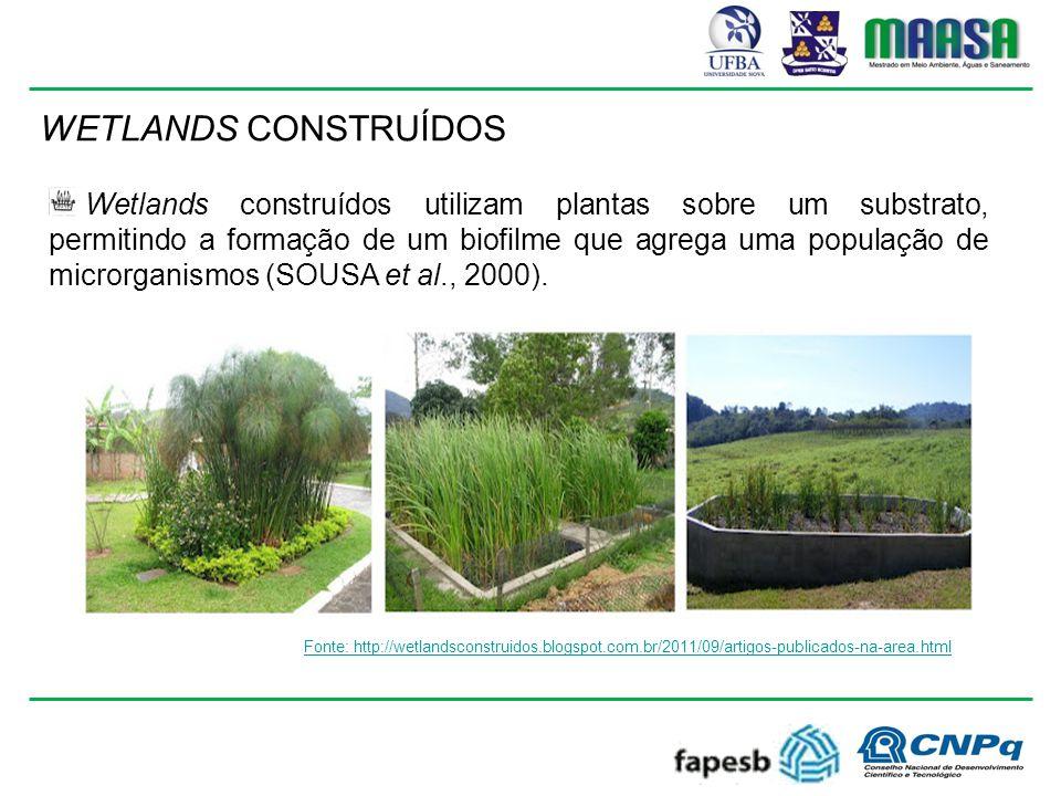 WETLANDS CONSTRUÍDOS Fonte: http://wetlandsconstruidos.blogspot.com.br/2011/09/artigos-publicados-na-area.html Wetlands construídos utilizam plantas sobre um substrato, permitindo a formação de um biofilme que agrega uma população de microrganismos (SOUSA et al., 2000).