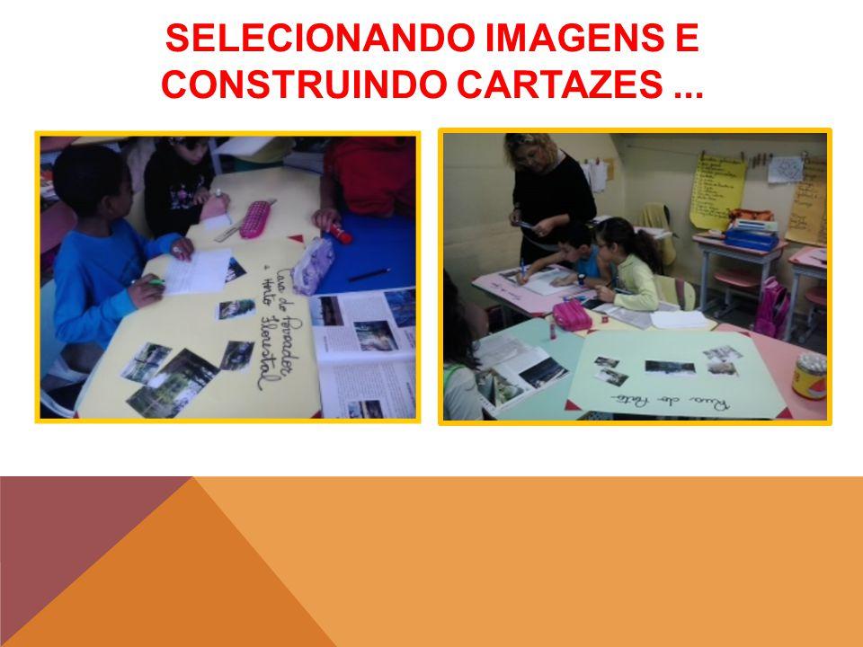 SELECIONANDO IMAGENS E CONSTRUINDO CARTAZES...