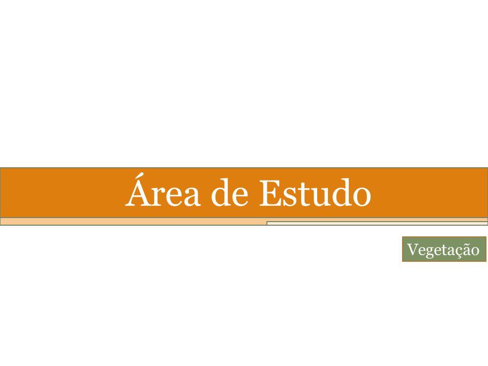 Área de Estudo Vegetação