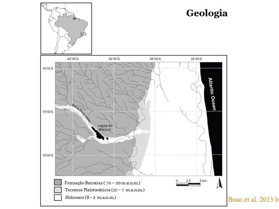 Formação Barreiras ( 70 – 20 m.a.n.m.) Terrenos Pleistocênicos (12 – 7 m.a.n.m.) Holoceno (8– 2 m.a.n.m.) Buso et al. 2013 b Geologia