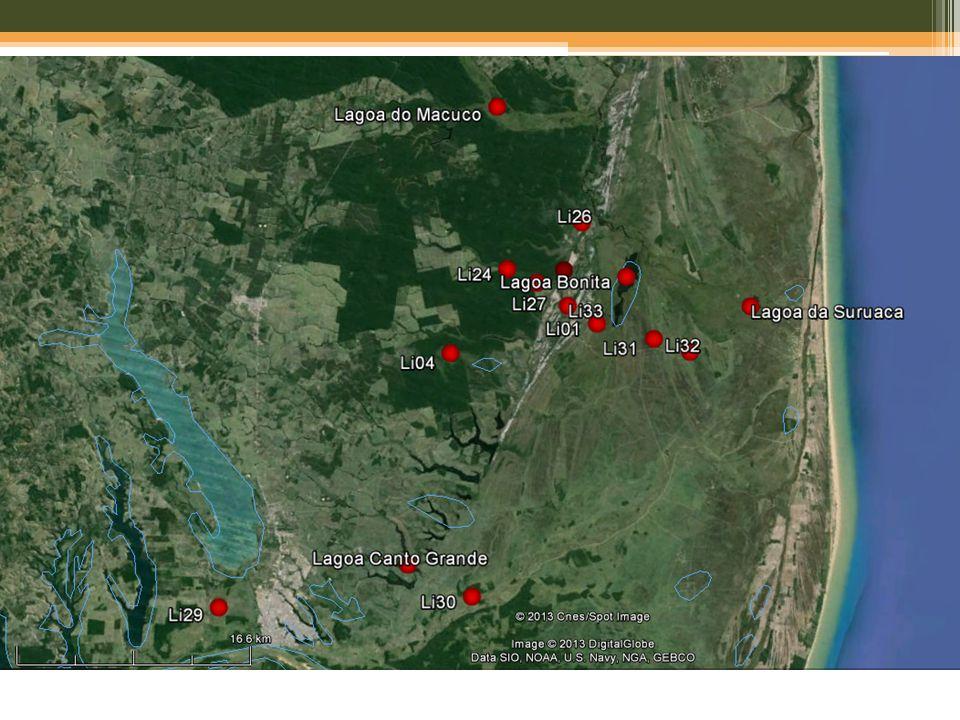1 – Reserva Natural Vale /Sooretama ~25km costa (Influência Marinha) * Buso Jr.