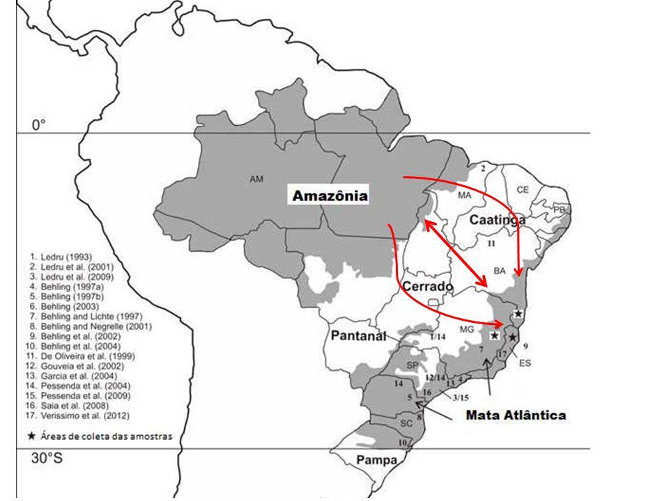 Nível Relativo Marinho (NRM) Esquema do nível relativo do mar registrado na costa brasileira, comparando o que foi proposto Figura de Buso-jr, 2010 Martin et al.