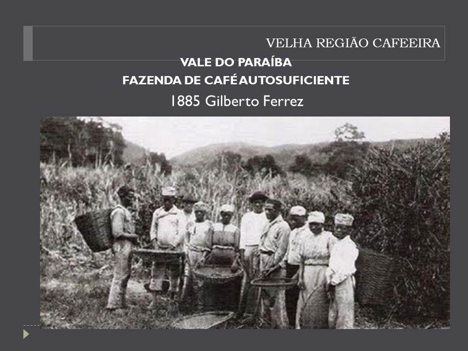 VELHA REGIÃO CAFEEIRA VALE DO PARAÍBA FAZENDA DE CAFÉ AUTOSUFICIENTE 1885 Gilberto Ferrez