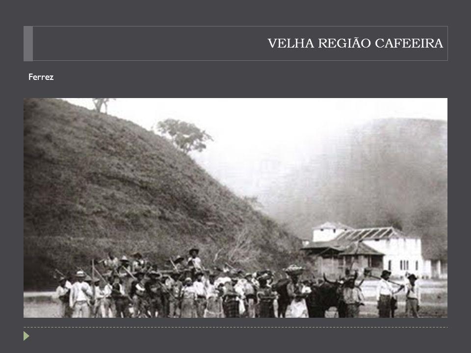 VELHA REGIÃO CAFEEIRA Ferrez