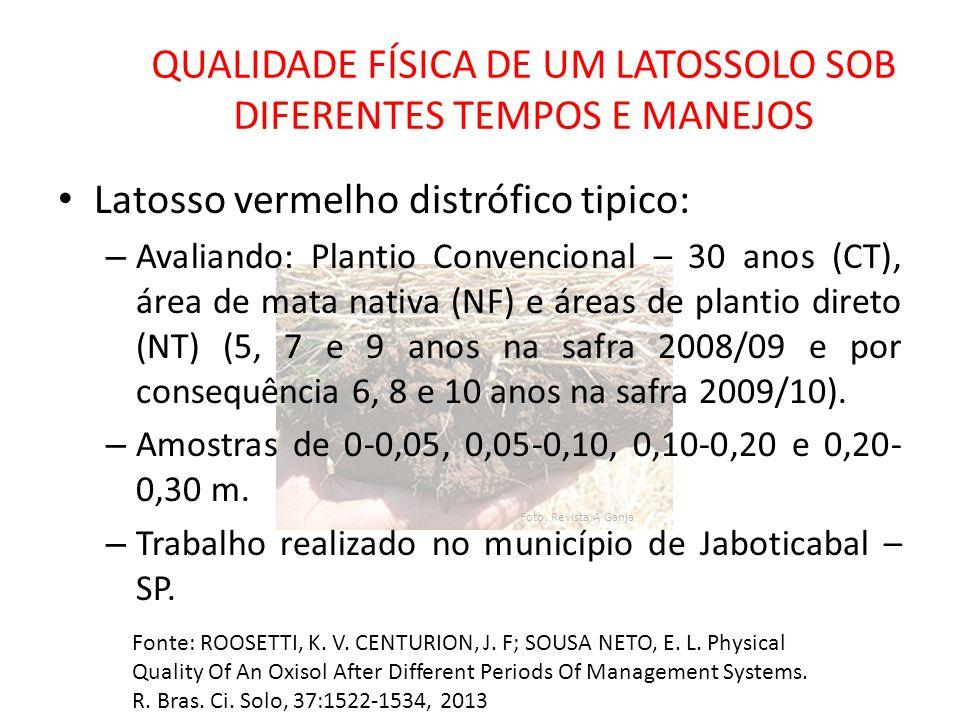 Foto: Revista A Ganja QUALIDADE FÍSICA DE UM LATOSSOLO SOB DIFERENTES TEMPOS E MANEJOS Latosso vermelho distrófico tipico: – Avaliando: Plantio Conven