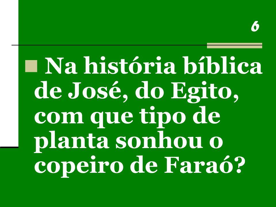 6 Na história bíblica de José, do Egito, com que tipo de planta sonhou o copeiro de Faraó?