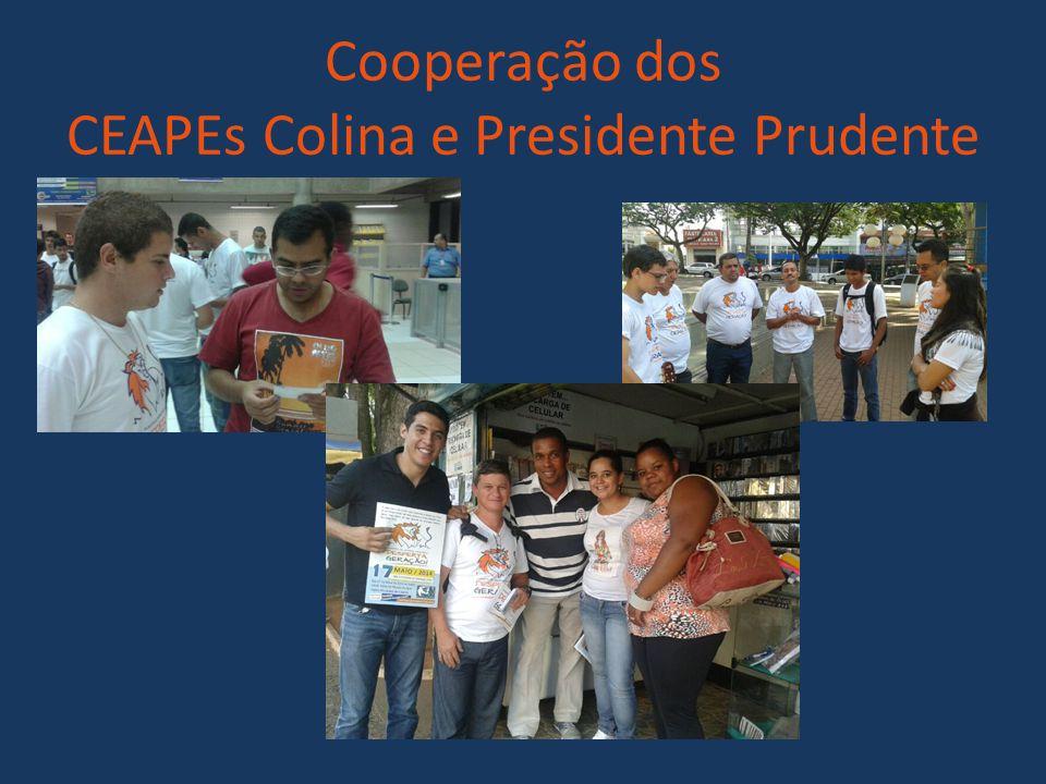 Cooperação dos CEAPEs Colina e Presidente Prudente