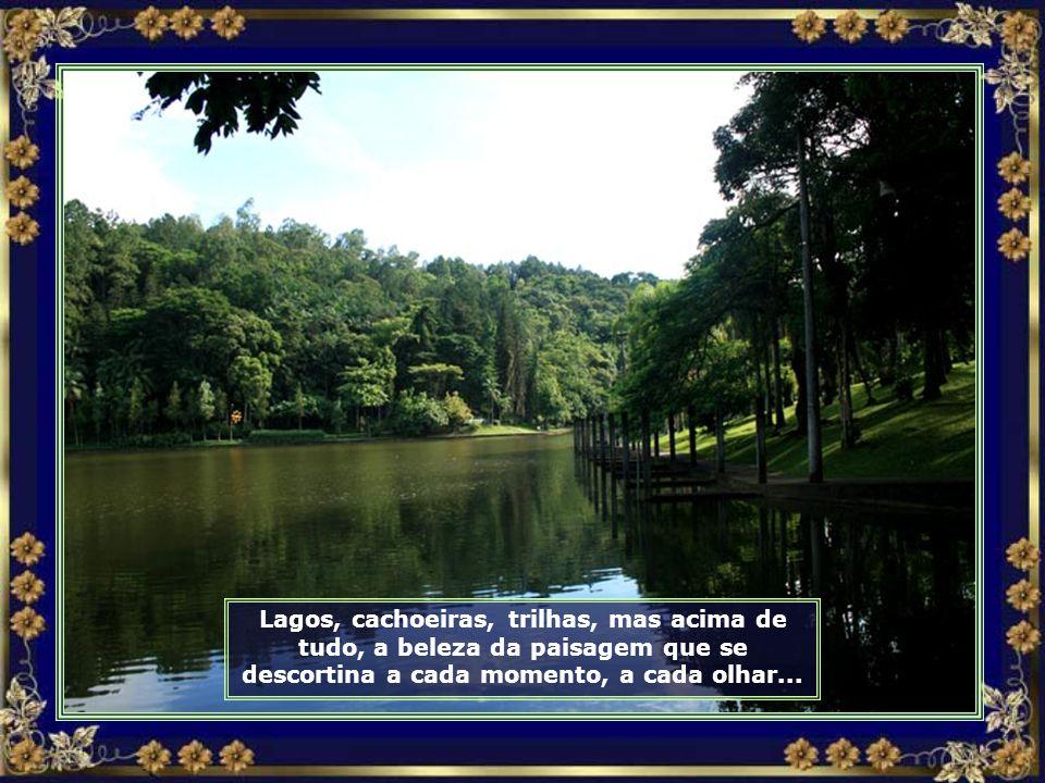 Grandes lagos recobertos por plantas exóticas enchem os olhos dos visitantes...