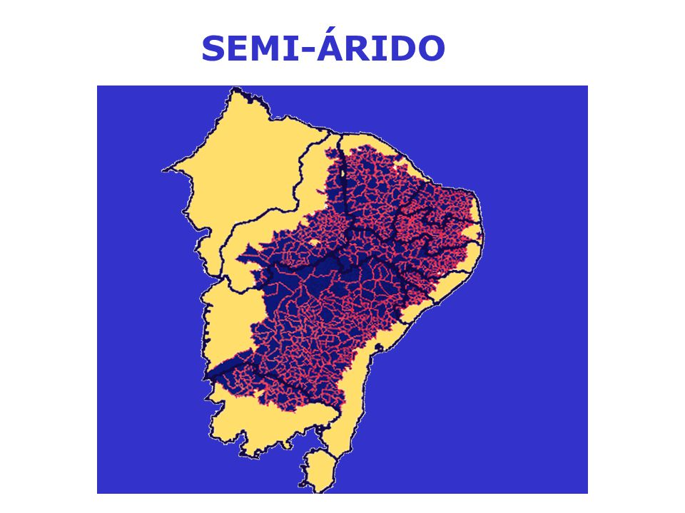 SEMI-ÁRIDO